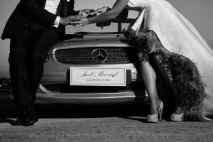 γάμος αλεξανδρούπολη